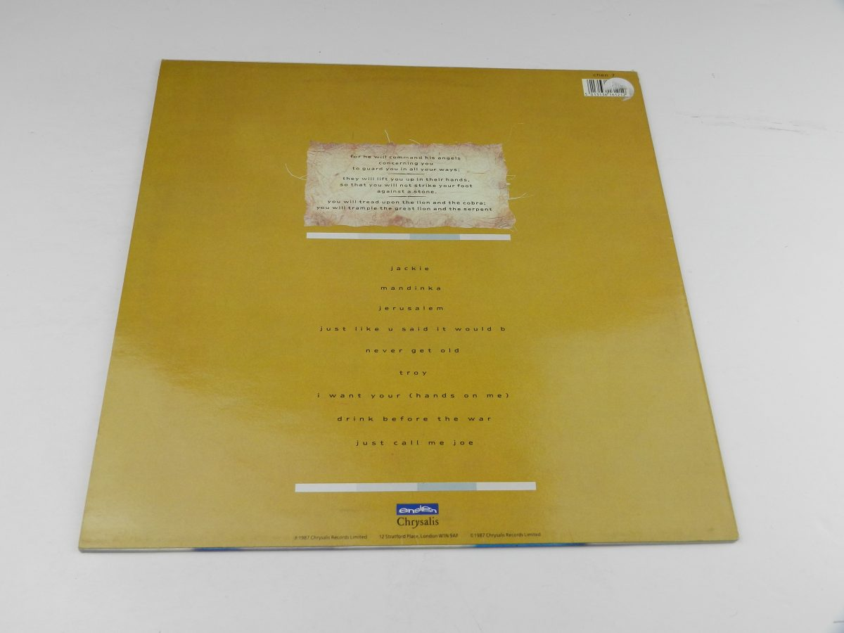 Sinead OConnor – The Lion And The Cobra vinyl record sleeve rear scaled